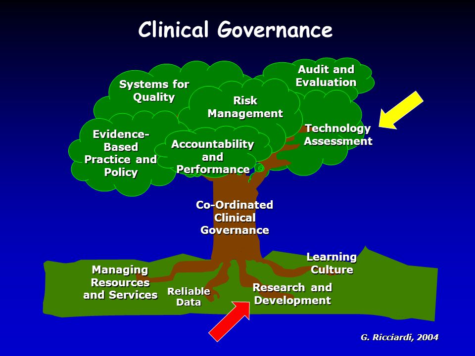 Clinical Governance 14/10/08 Audit and Evaluation Systems for Quality