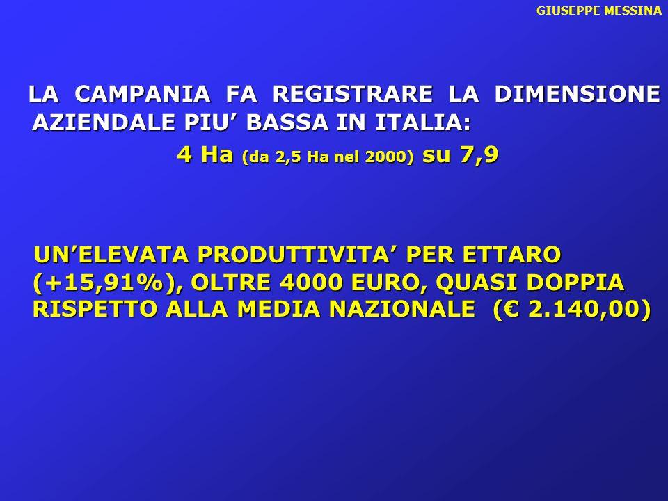 GIUSEPPE MESSINA LA CAMPANIA FA REGISTRARE LA DIMENSIONE AZIENDALE PIU' BASSA IN ITALIA: 4 Ha (da 2,5 Ha nel 2000) su 7,9.