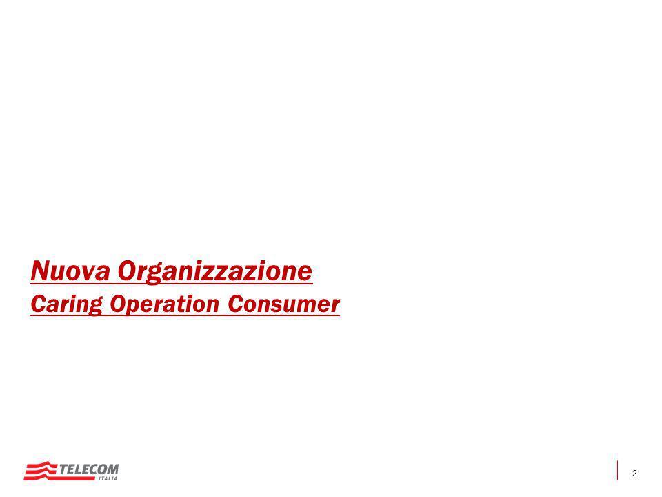Nuova Organizzazione Caring Operation Consumer