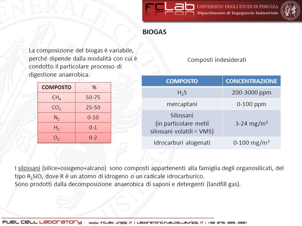 BIOGAS La composizione del biogas è variabile, perché dipende dalla modalità con cui è condotto il particolare processo di digestione anaerobica.