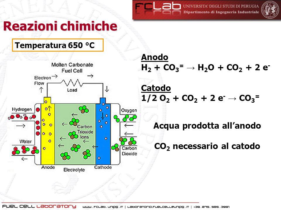 Acqua prodotta all'anodo CO2 necessario al catodo