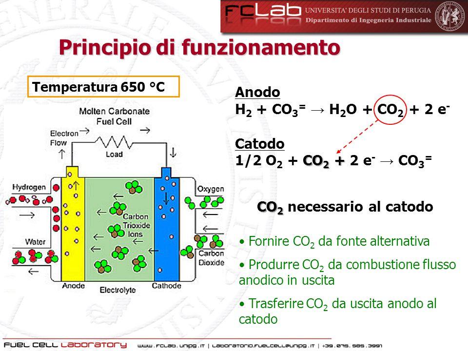 Principio di funzionamento CO2 necessario al catodo