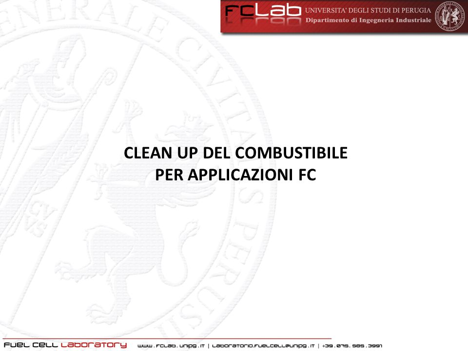 CLEAN UP DEL COMBUSTIBILE