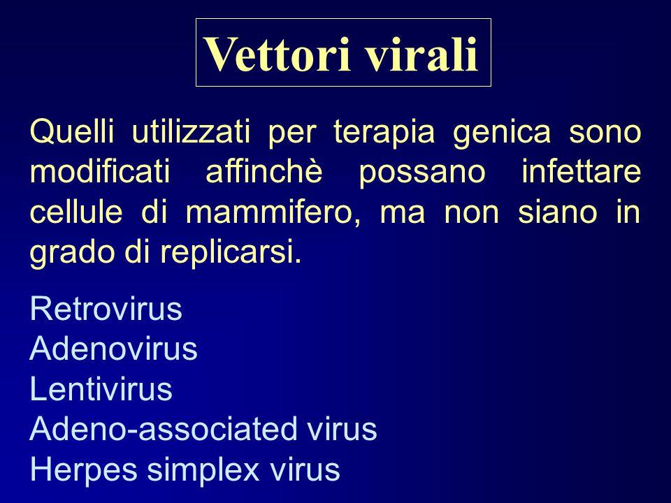 Vettori virali