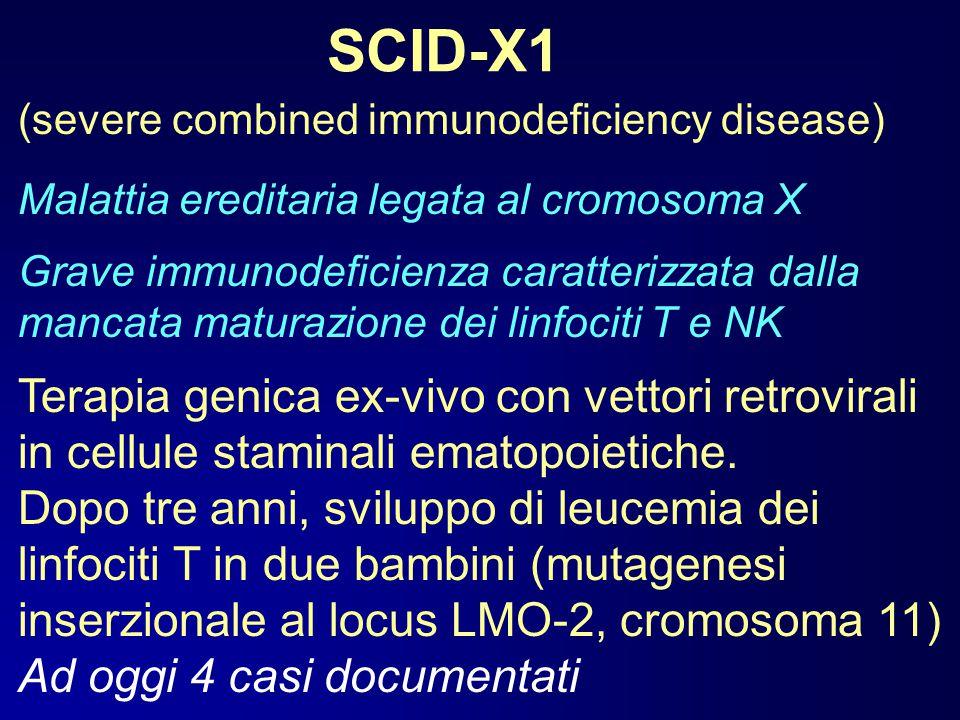 SCID-X1 (severe combined immunodeficiency disease) Malattia ereditaria legata al cromosoma X.