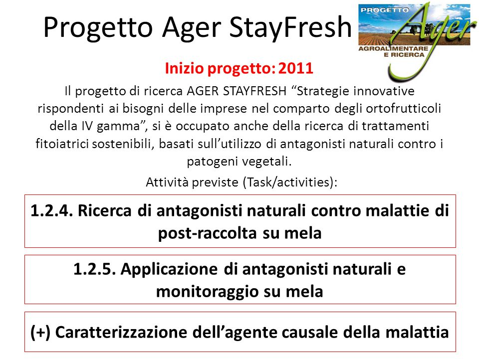 Progetto Ager StayFresh