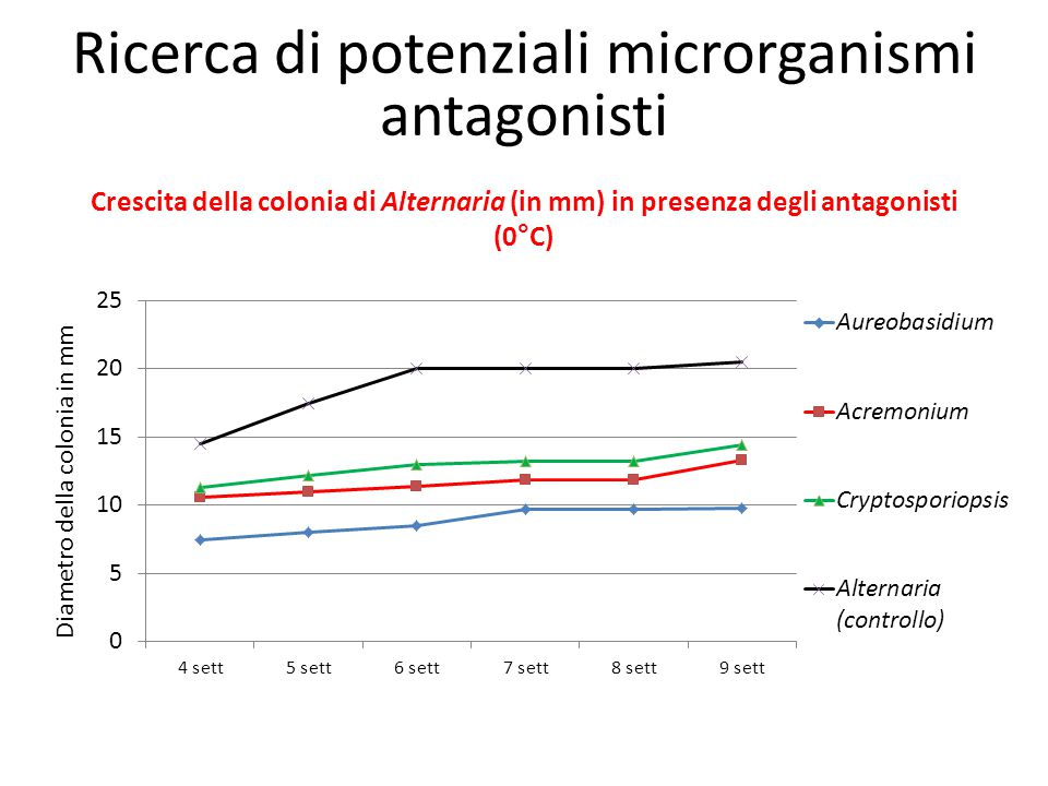 Ricerca di potenziali microrganismi antagonisti