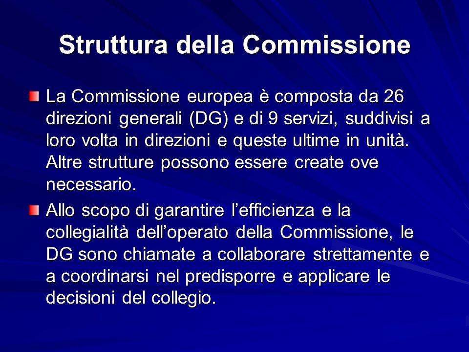 Struttura della Commissione