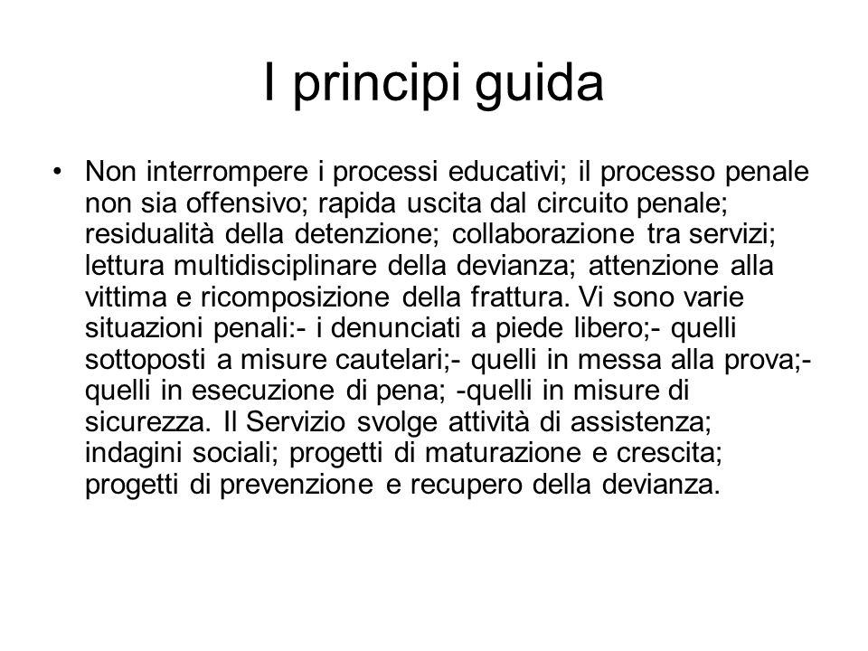 I principi guida