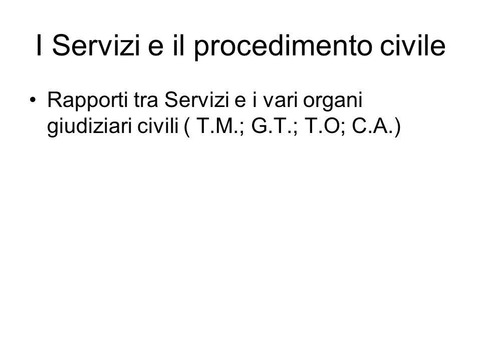 I Servizi e il procedimento civile