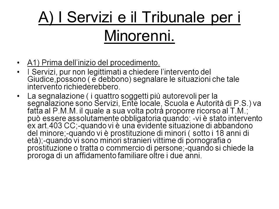 A) I Servizi e il Tribunale per i Minorenni.