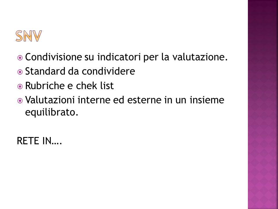 SNV Condivisione su indicatori per la valutazione.
