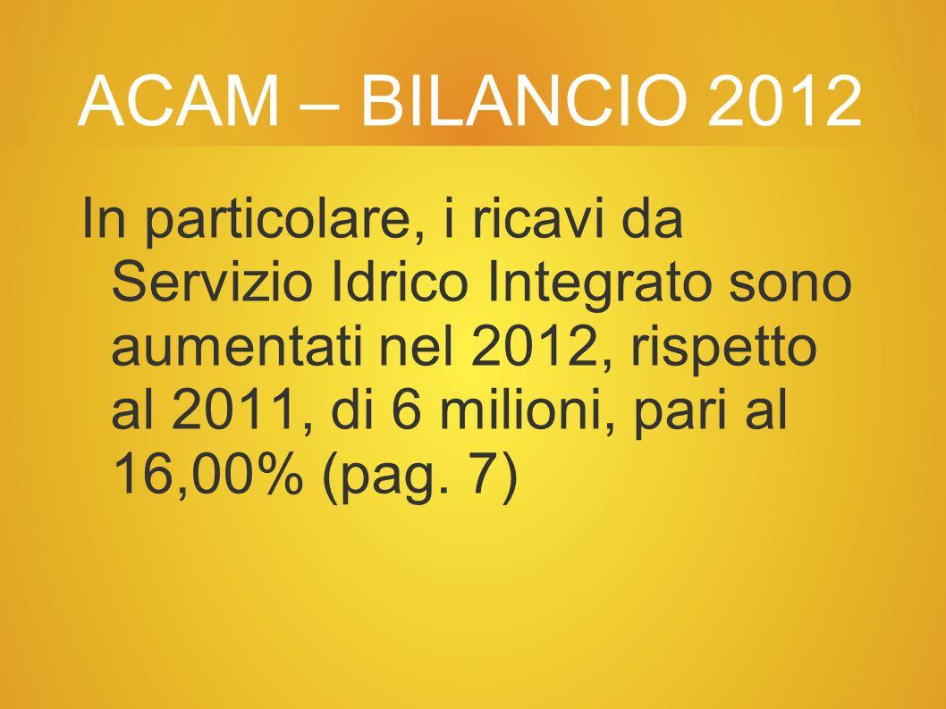 ACAM – BILANCIO 2012