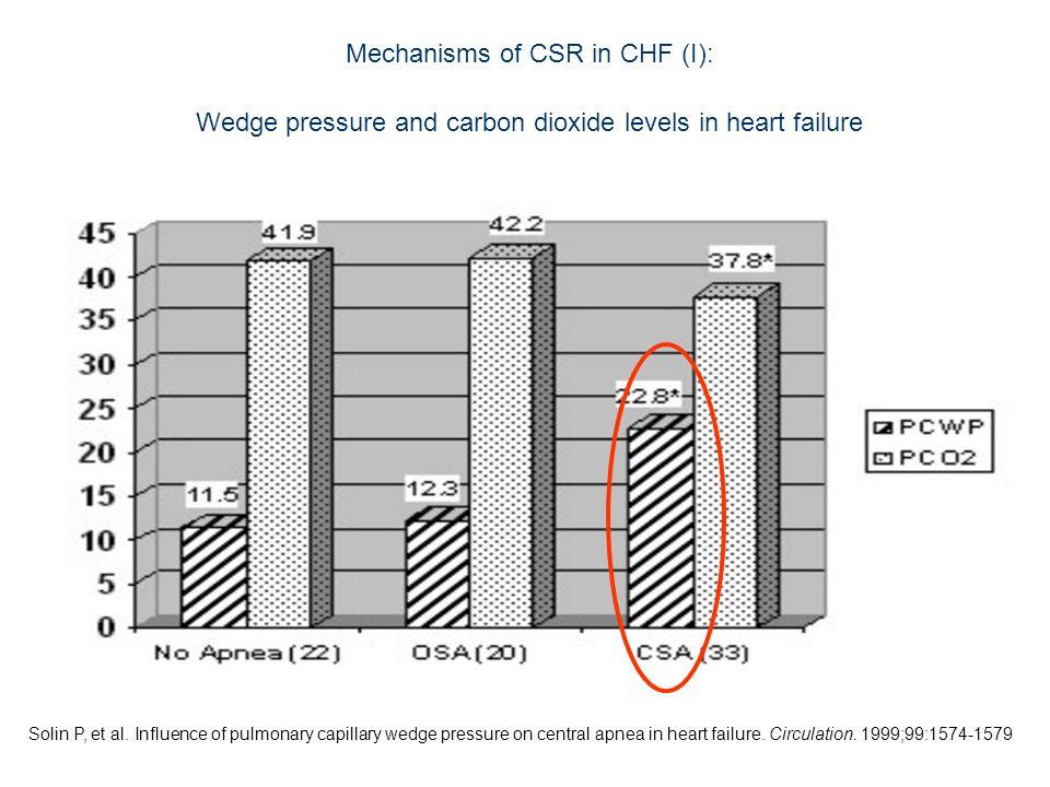 Mechanisms of CSR in CHF (I):