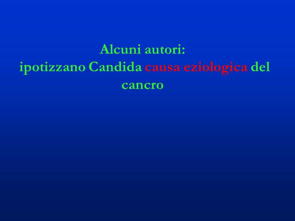 Alcuni autori: ipotizzano Candida causa eziologica del cancro