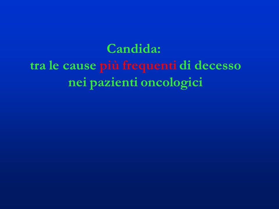 Candida: tra le cause più frequenti di decesso nei pazienti oncologici