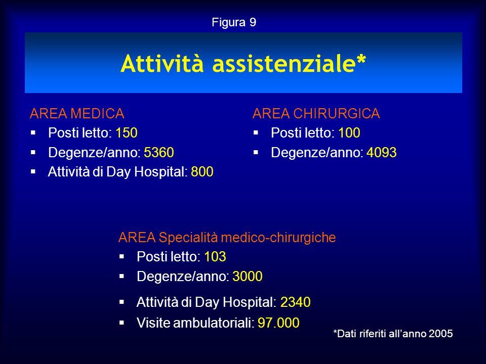 Attività assistenziale*