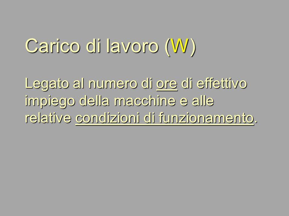 Carico di lavoro (W) Legato al numero di ore di effettivo impiego della macchine e alle relative condizioni di funzionamento.