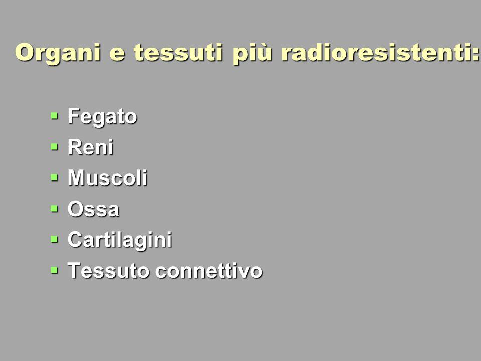 Organi e tessuti più radioresistenti: