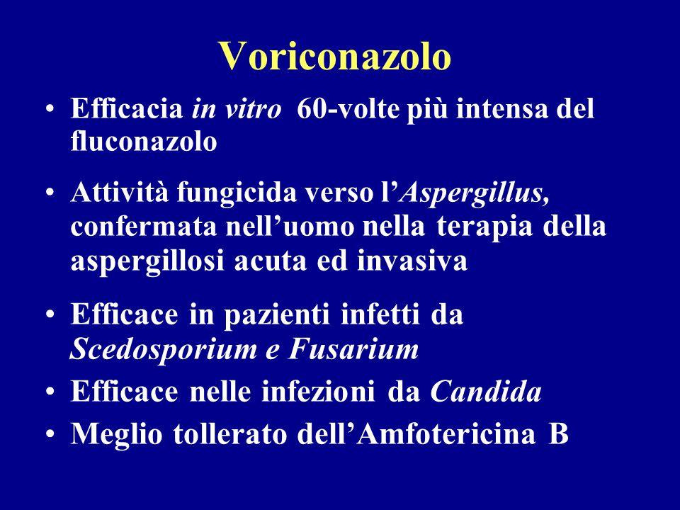 Voriconazolo Efficace in pazienti infetti da Scedosporium e Fusarium
