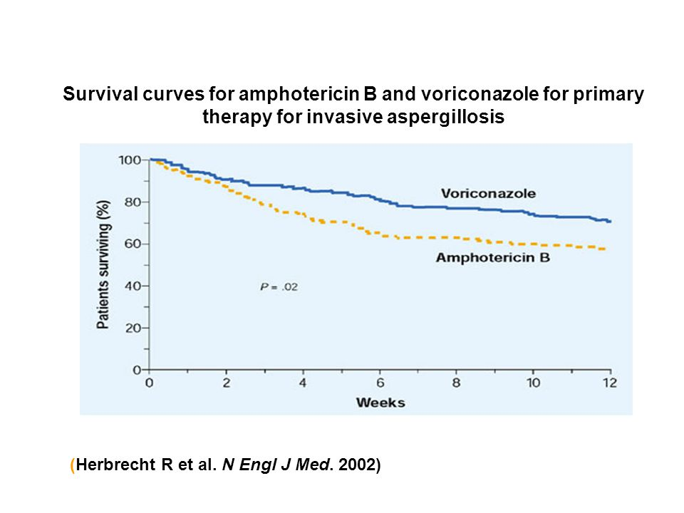 Survival curves for amphotericin B and voriconazole for primary therapy for invasive aspergillosis