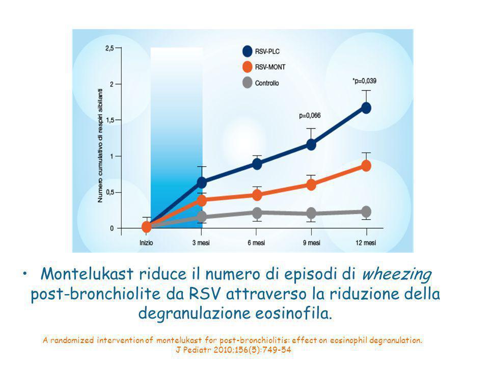 Montelukast riduce il numero di episodi di wheezing post-bronchiolite da RSV attraverso la riduzione della degranulazione eosinofila.