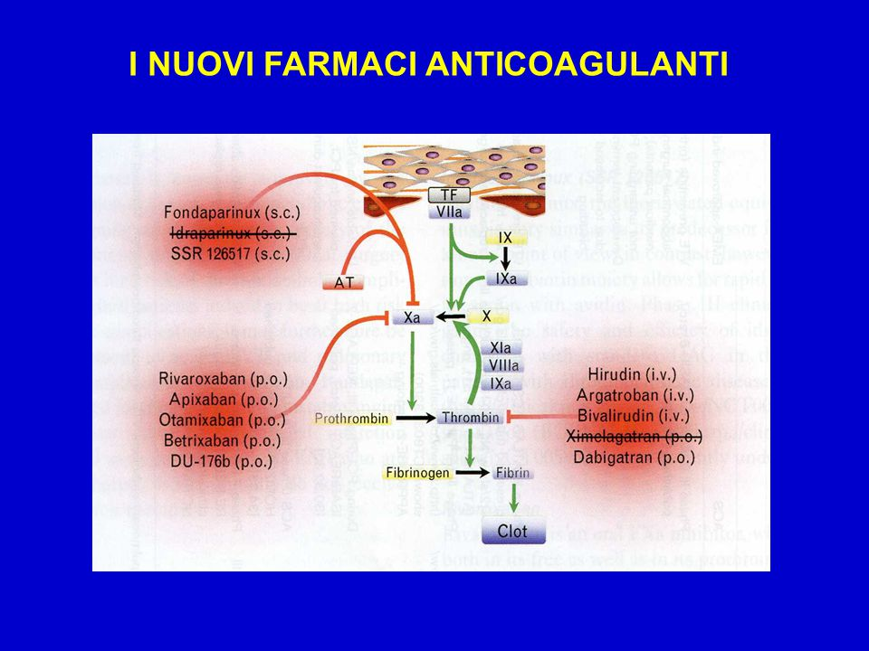 I NUOVI FARMACI ANTICOAGULANTI