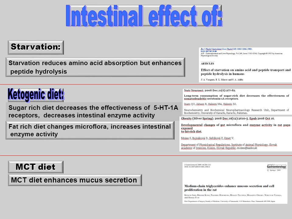 Ketogenic diet: Intestinal effect of: Starvation: MCT diet