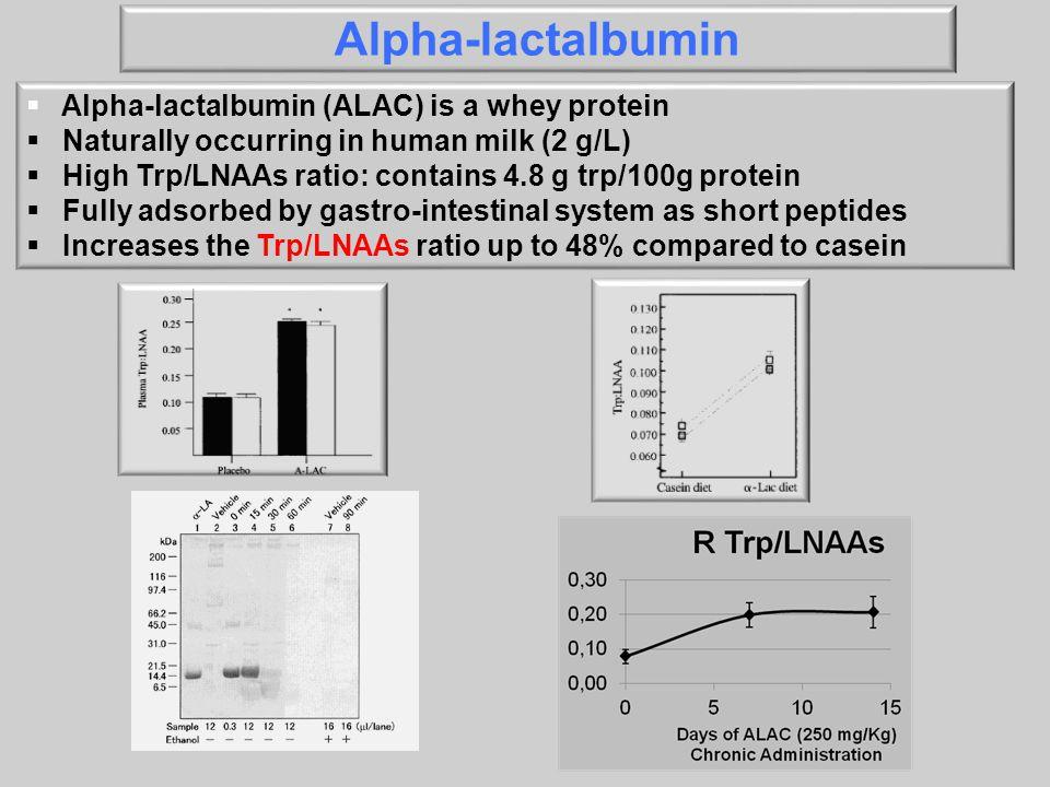 Alpha-lactalbumin Alpha-lactalbumin (ALAC) is a whey protein