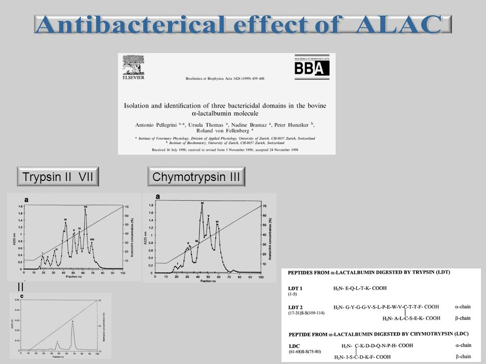 Antibacterical effect of ALAC