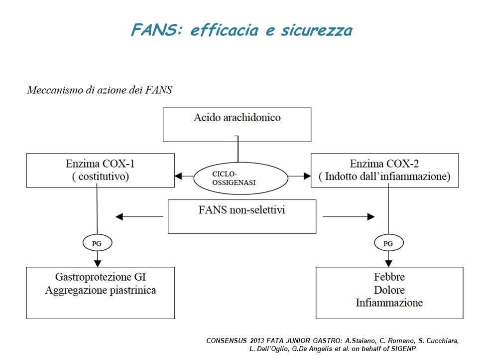 FANS: efficacia e sicurezza