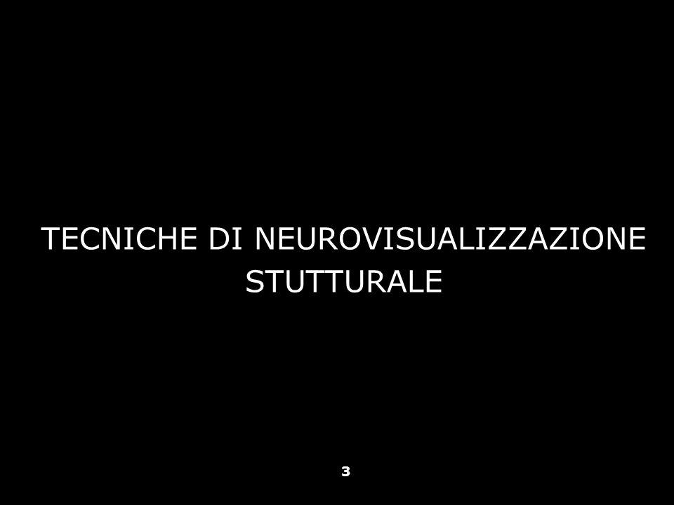 TECNICHE DI NEUROVISUALIZZAZIONE STUTTURALE