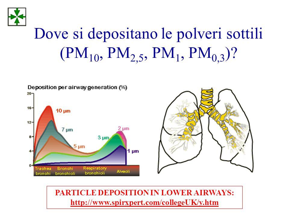 Dove si depositano le polveri sottili (PM10, PM2,5, PM1, PM0,3)