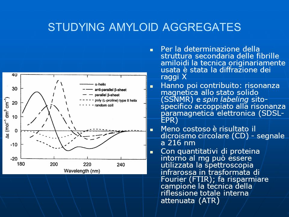 STUDYING AMYLOID AGGREGATES