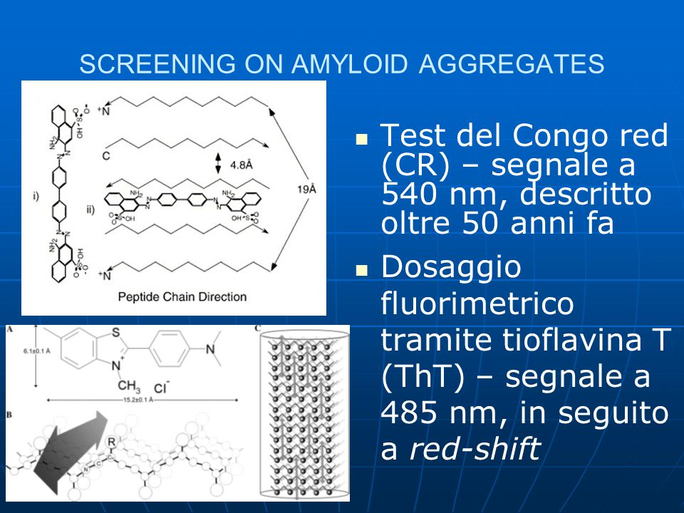 SCREENING ON AMYLOID AGGREGATES