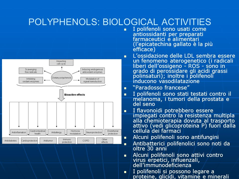 POLYPHENOLS: BIOLOGICAL ACTIVITIES