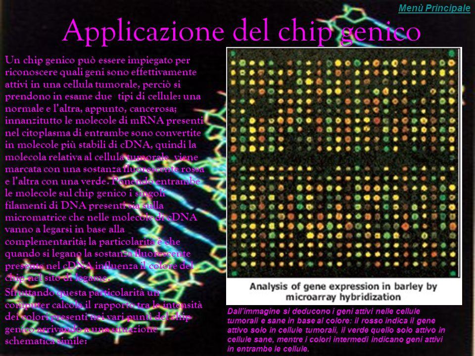 Applicazione del chip genico