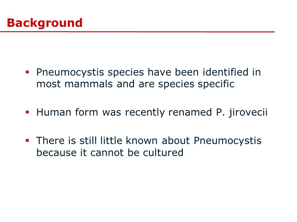 Background Pneumocystis species have been identified in most mammals and are species specific. Human form was recently renamed P. jirovecii.