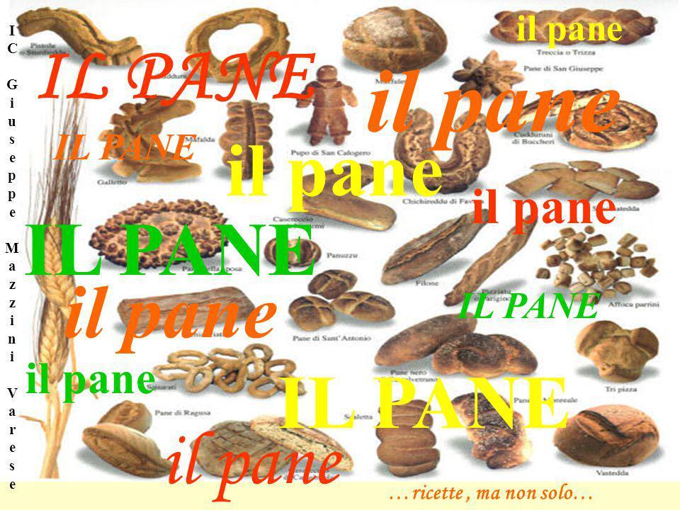 il pane IL PANE il pane IL PANE il pane IL PANE il pane il pane