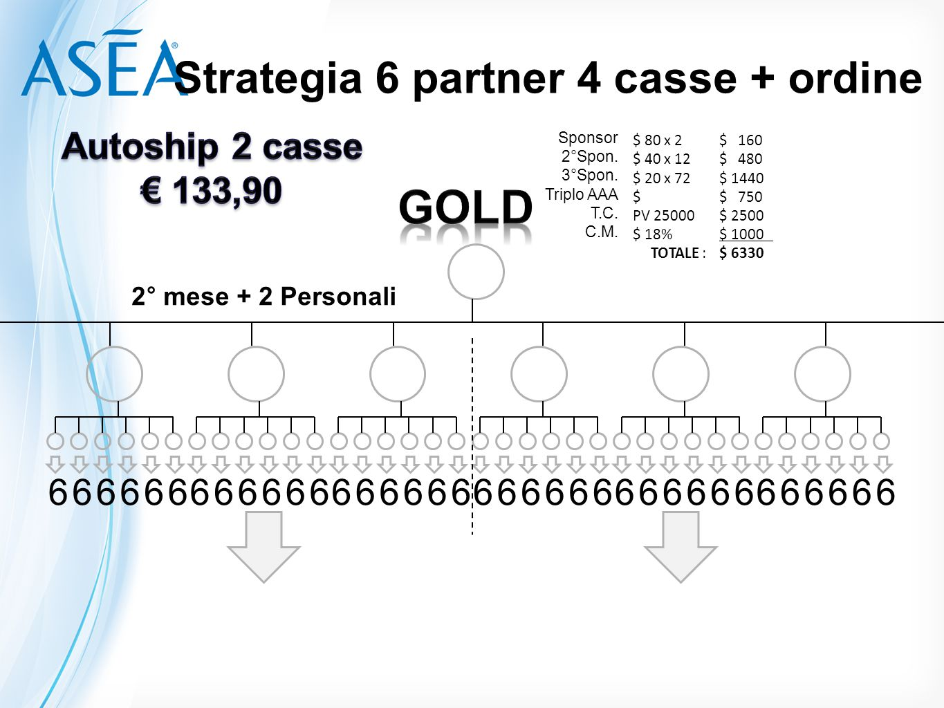Strategia 6 partner 4 casse + ordine