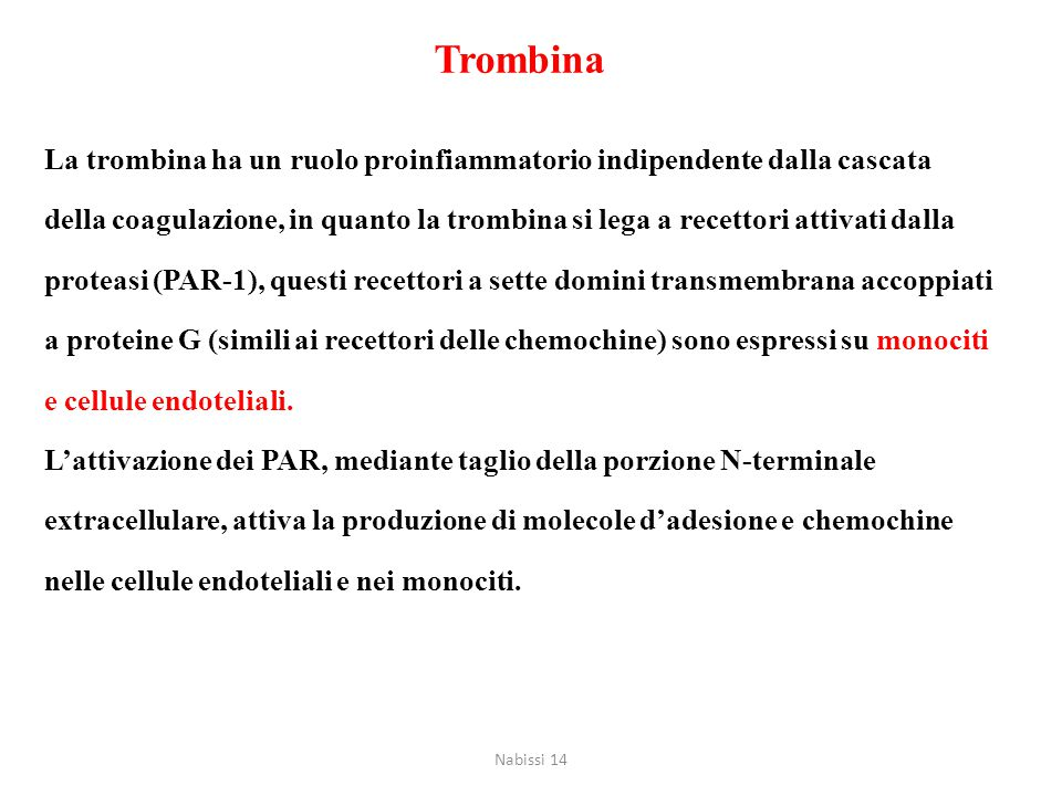 Trombina La trombina ha un ruolo proinfiammatorio indipendente dalla cascata.