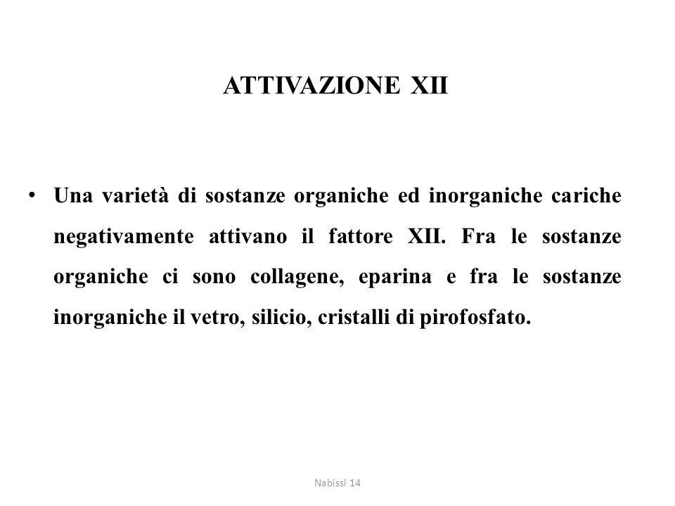ATTIVAZIONE XII