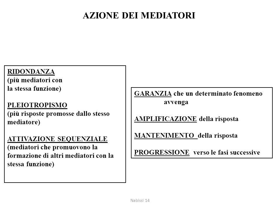 AZIONE DEI MEDIATORI RIDONDANZA (più mediatori con la stessa funzione)