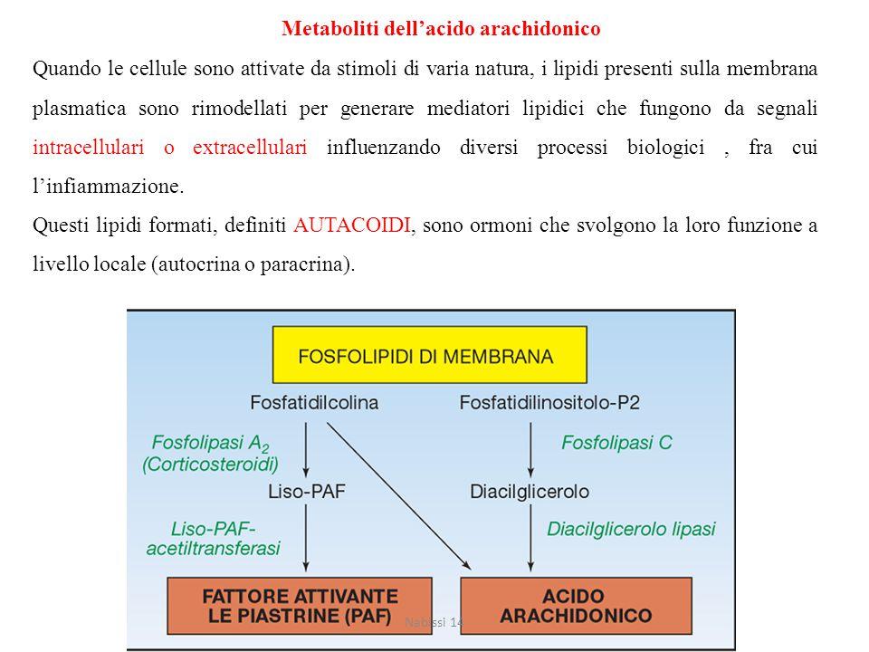 Metaboliti dell'acido arachidonico