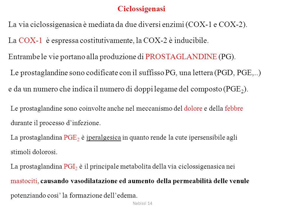 La COX-1 è espressa costitutivamente, la COX-2 è inducibile.