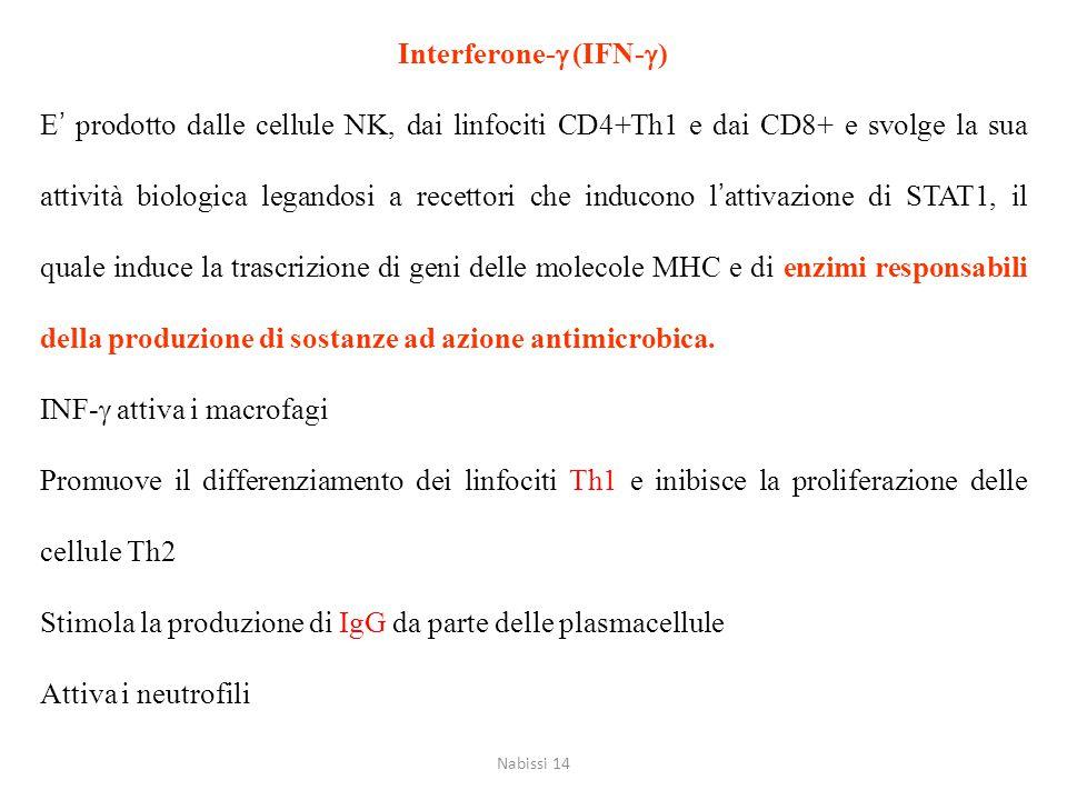 Interferone-g (IFN-g)