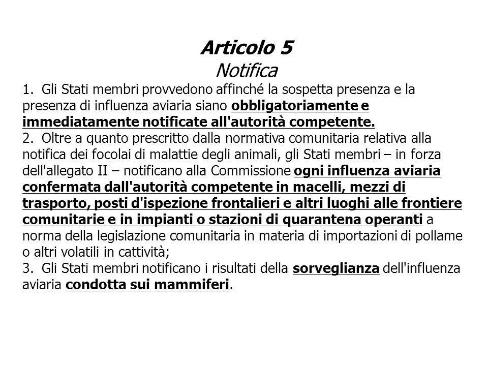 Articolo 5 Notifica
