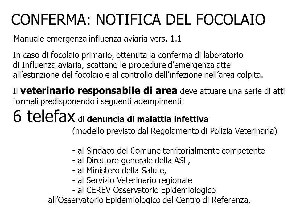 6 telefax di denuncia di malattia infettiva