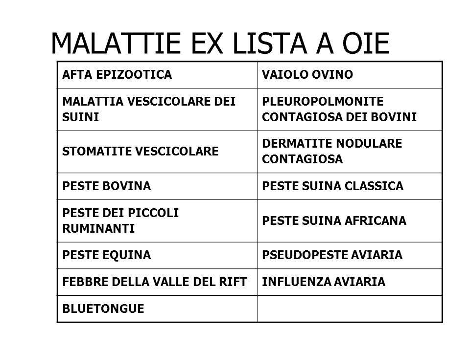 MALATTIE EX LISTA A OIE AFTA EPIZOOTICA VAIOLO OVINO