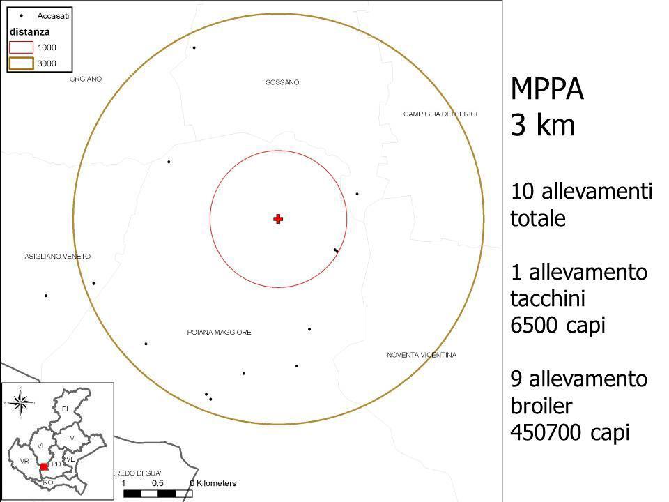 MPPA 3 km 10 allevamenti totale 1 allevamento tacchini 6500 capi